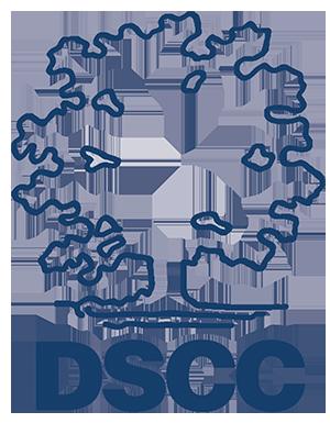 Dyersburg State College