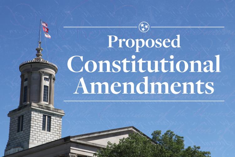 Proposed Constitutional Amendment