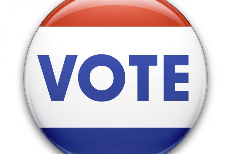image of a vote pin